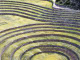 Perù, Valle Sacra, Moray, sito archeologico con terrazzamenti Inca.crop_display.jpg