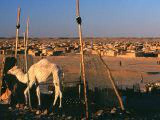 Algeria, campi profughi Saharawi.crop_display.jpg