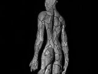 manichino anatomico con vista del sistema venoso e arterioso.crop_display.jpg